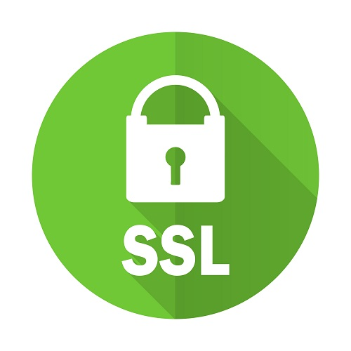 ssl green flat icon